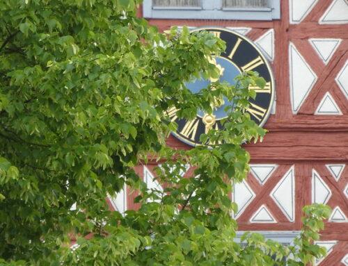 Der Weiher in Stammheim – wie viel Bürgerbeteiligung muss/sollte sein?